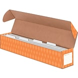 Sentence Strip Storage Box w/4 Dividers