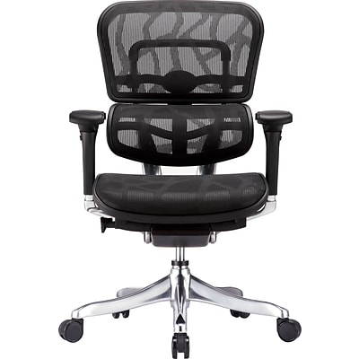 Raynor Eurotech Ergohuman Mid Back Executive Chair, Patterned Mesh, Black