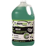 Diversey® Lime Out Delimer, 4 x 1 Gallon