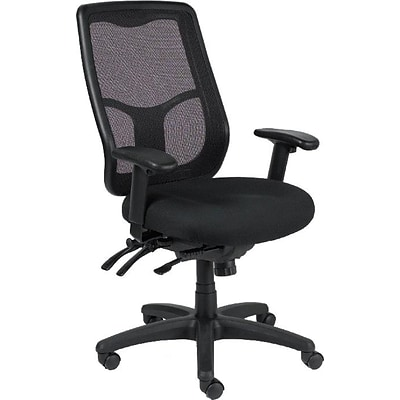 Raynor Eurotech Apollo Mesh High-Back Task Chair, Black, Adjustable Arms (MFHB9SL)