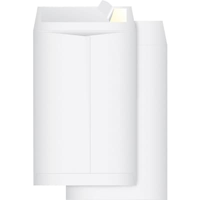 Quill Brand® Tyvek Plain Catalog Envelopes; 6x9, White, 100/Box