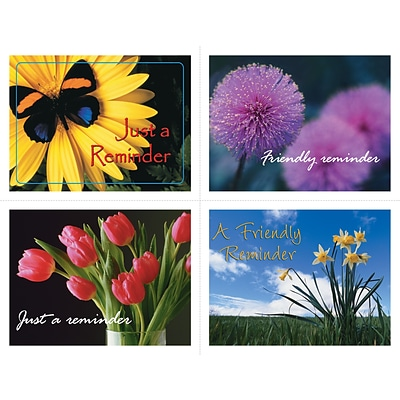 Generic Assorted Laser Postcards, Flower Groups