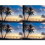 Scenic Postcards; Palm Trees & Ocean Scene