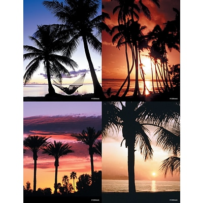Generic Assorted Laser Postcards; Palm Trees