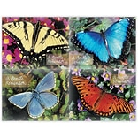 Beautiful Butterflies Assorted Lsr Postcards