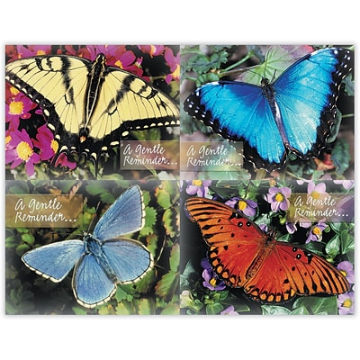 Generic Assorted Laser Postcards; Beautiful Butterflies