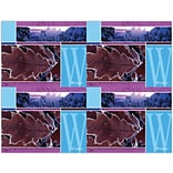 Winter Scene Generic Laser Postcards