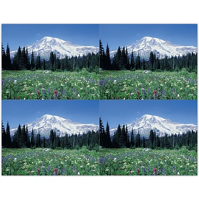 Generic Laser Postcards; Mountain Meadow Scene