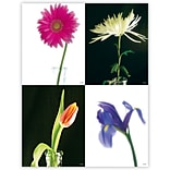 Flowers Generic Assorted Laser Postcards