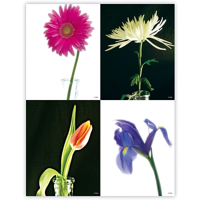 Generic Assorted Laser Postcards; Flowers