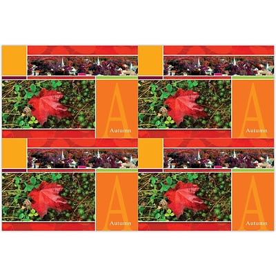 Generic Laser Postcards; Autumn Scene