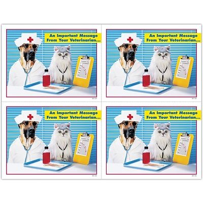 Graphic Image Laser Postcards; Nurse and Doctor Pets
