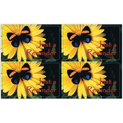 Generic Laser Postcards, Butterfly