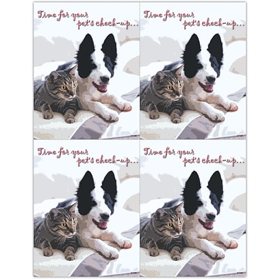 Photo Image Laser Postcards; Pets Check-up