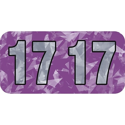 Medical Arts Press® Holographic End-Tab Year Labels; 2017, Violet