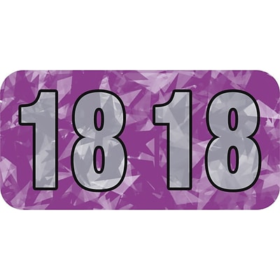 Medical Arts Press® Holographic End-Tab Year Labels; 2018, Violet