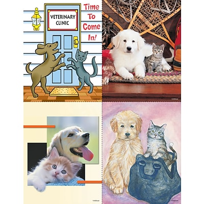 Veterinary Assorted Laser Postcards; Treatment Reminder