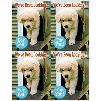 Photo Image Laser Postcards, Dog in Mailbox