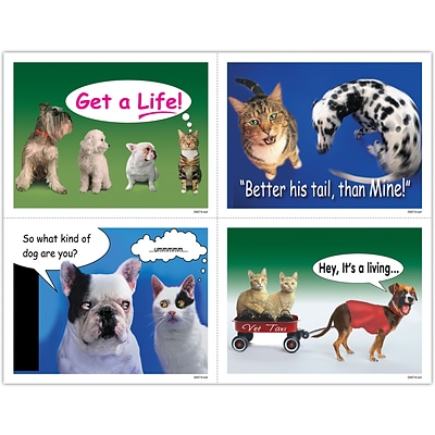 Veterinary Assorted Laser Postcards; Dog and Cat Humor