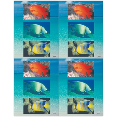 Scenic Laser Postcards, Tropical Fish