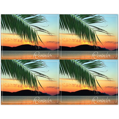 Scenic Laser Postcards, Scenic Palm Reminder