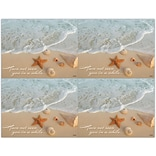 Scenic Laser Postcards, Beach Shells