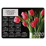 Calendar Magnets; 5x7, Red Tulips