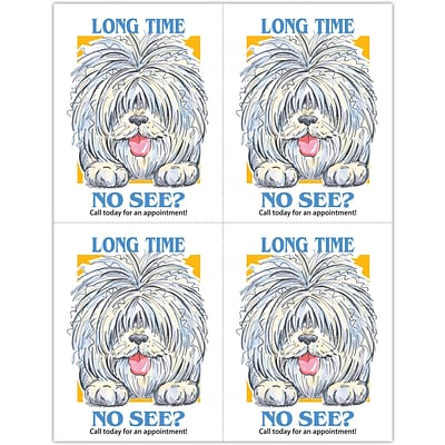 Humorous Laser Postcards, Shaggy Dog