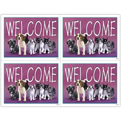 Medical Arts Press® Veterinary  Laser Postcards, Welcome, Pets in a Line