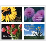 Generic Assorted Laser Postcards; Flower Groups, Spanish
