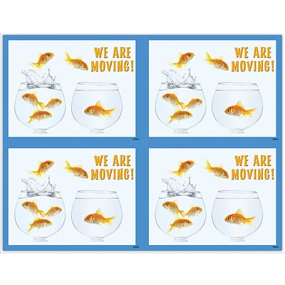 Graphic Image Laser Postcards, Fish Bowls