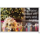 4x6 Postcards Dog in Holiday Lights