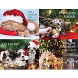 Asrtd Laser Postcard Holiday Pets