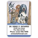 Medical Arts Press® 2x3 Glossy Full-Color Veterinary Magnets; Many Pets