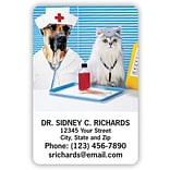 Medical Arts Press® 2x3 Glossy Full-Color Veterinary Magnets; Pet Vets