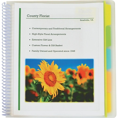 10-Pocket Poly Portfolio With Write-On Tabs, Clear W/assorted Color Tabs, Letter