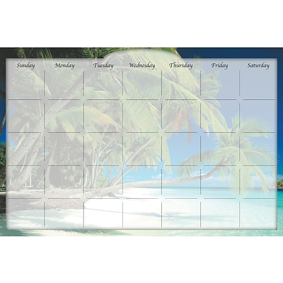 Biggies Beach Island, 48 x 32, Film Dry Erase Stickie Monthly Calendar (DC-BHI-48)