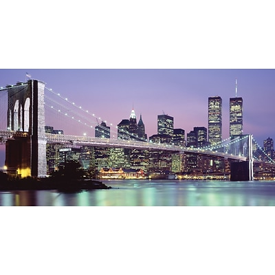 Biggies- Wall Mural- NY Skyline 120 x 60