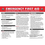 ACCUFORM SIGNS® Safety Poster, EMERGENCY FIRST AID, 18 x 24, Laminated Flexible Plastic, Each