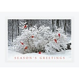 Holiday Expressions® Holiday Cards; Winter Perch, Self-Seal Envelopes