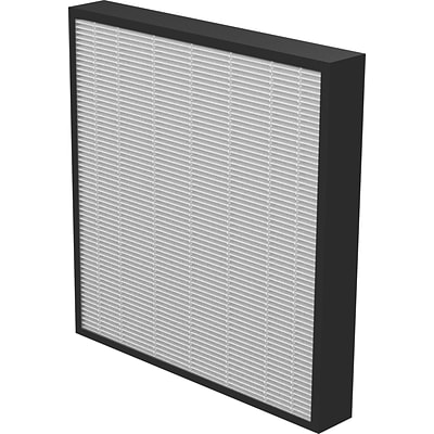 Fellowes® AeraMax™ Pro Replacement HEPA Filter, 2, 2/Pack (9416602)