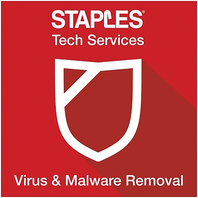 Virus & Malware Removal (Online Delivery)