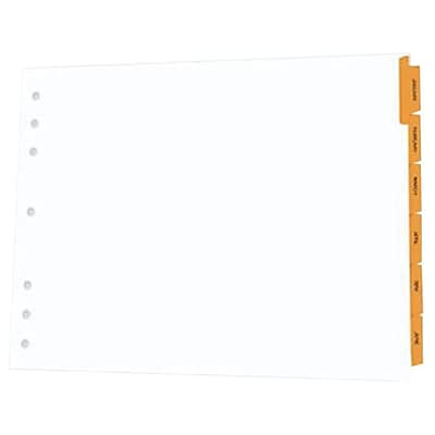 Appointment Book Dividers; 17x11; Jan-Dec