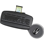 Safco Premier Series Keyboard Platform with Control Zone, Black (2143BL)