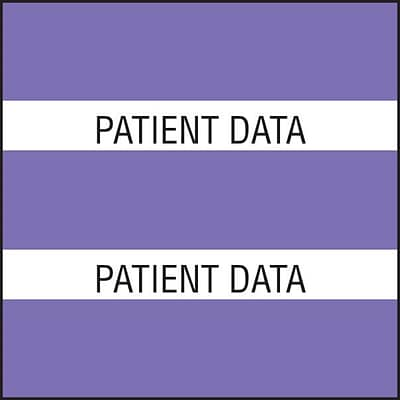 Medical Arts Press® Large Chart Divider Tabs, Patient Data, Purple