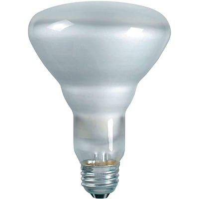 Philips 65W Soft White Incandescent Light Bulb, BR30, 12/Pack (248765)