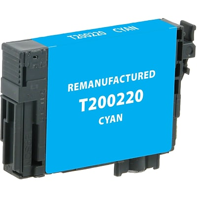 DataProducts Remanufactured Cyan Standard Yield Ink Cartridge Replacement for Epson T2002 (200)