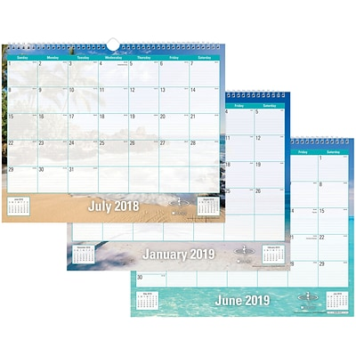 2018-2019 Blue Sky Academic Wall Calendar Endless Summer, 15 x 12 (BSK-102108-A19)