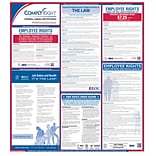 ComplyRight™ Federal Labor Law Poster, English (ERFED)