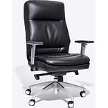 Beautyrest Platinum Abott Mid-Back Task Chair, Black (49608)